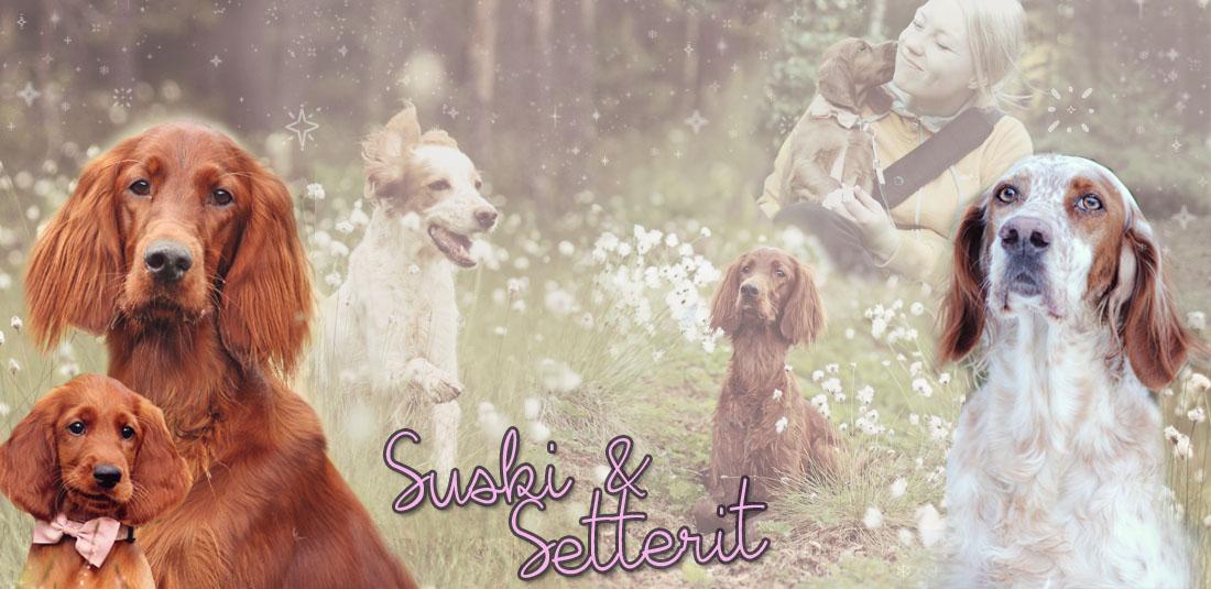 Suski & Setterit