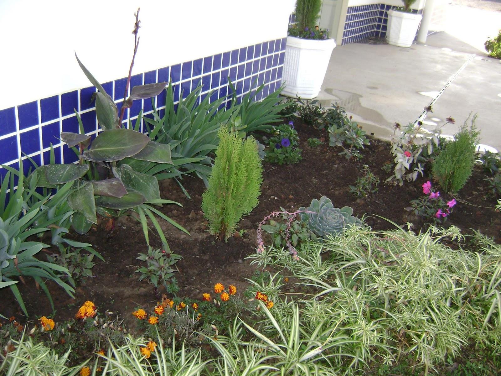 imagens de jardim horta e pomar : imagens de jardim horta e pomar:Carahá de Cara Nova: Horta, pomar e jardim do CEIM Profª Valéria