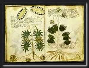 Buku Farmasi Kuno