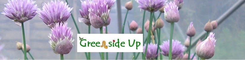 Greenside Up Vegetable Blog