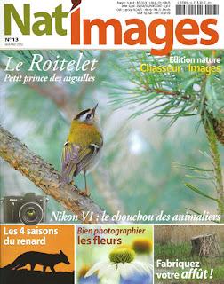 nat'images 13, la couverture: oiseaux, renard , fleurs...