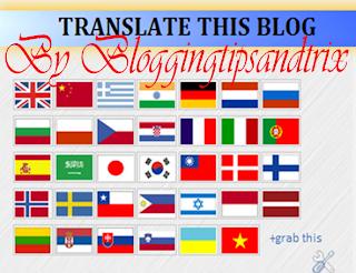 add translator widget