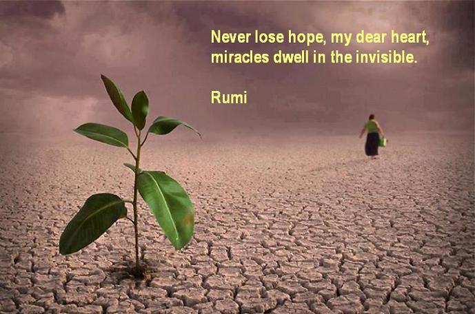 Never Lose Hope Rumi Quotes On Hope Kalam E Rumi