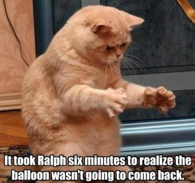 Cat Ralph's baloon