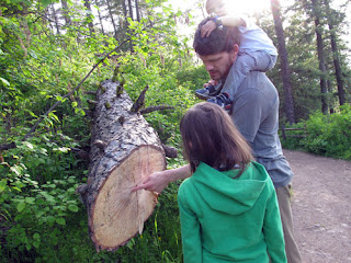 Hubby explaining tree rings to the kids