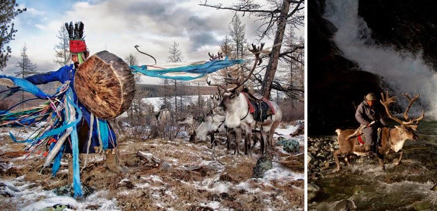 reindeer people Dukha people Hamid Sardar-Afkhami-6