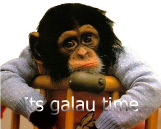 dp bbm lucu monyet lagi galau