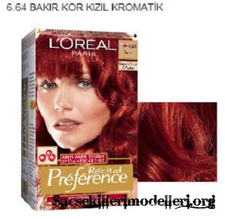 loreal renk katalou to download loreal renk katalou just right click ...