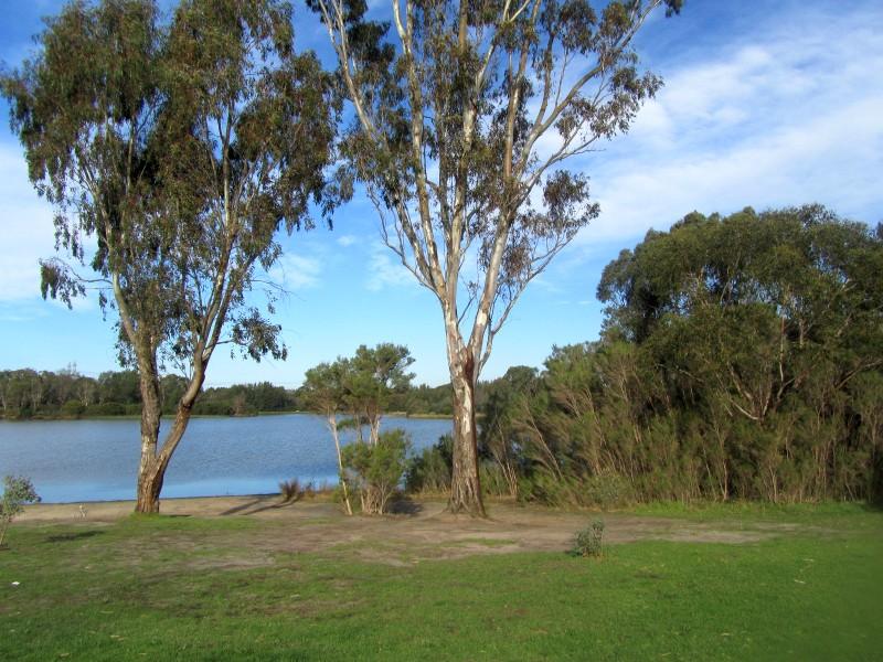 Jells Park Lake
