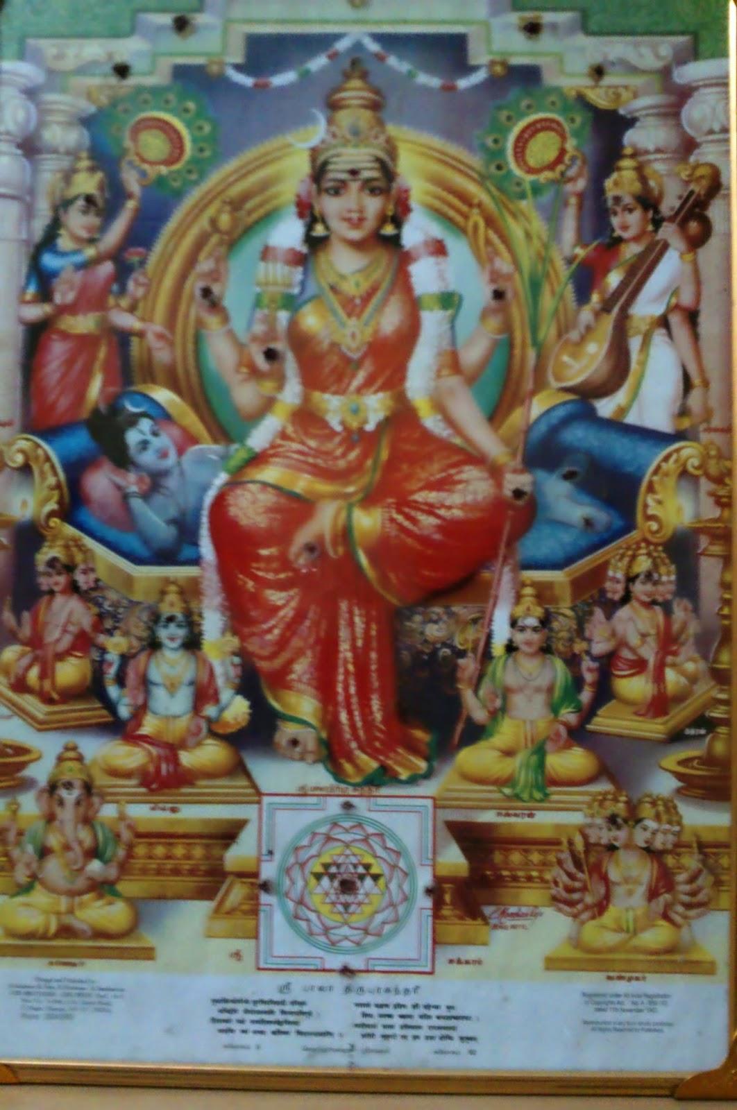 Image result for பஞ்சபட்சி சாஸ்திரம்