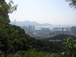 Jungle view of Kowloon