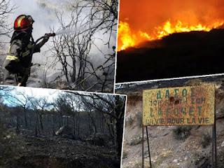 Μήπως κάτι πολύ παράξενο και επικίνδυνο συμβαίνει στην Χίο;