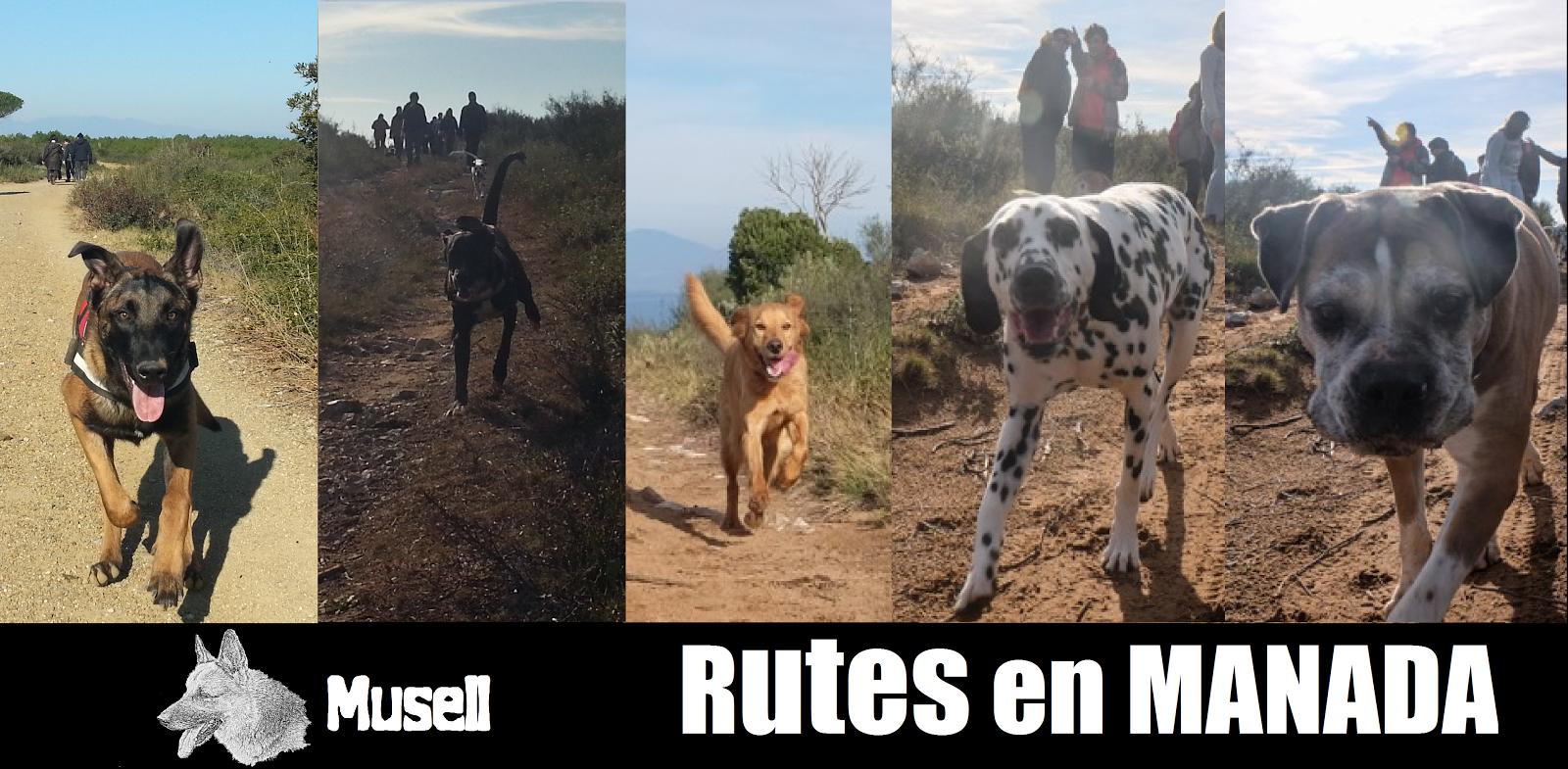 RUTES EN MANADA