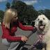 Duke, Anjing yang Menjadi Walikota di Amerika Serikat