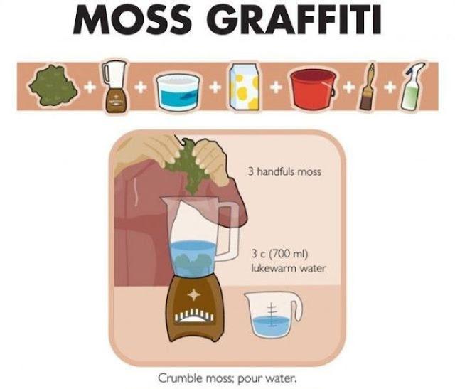 ¿Cómo hacer graffiti de musgo? [Tutorial]