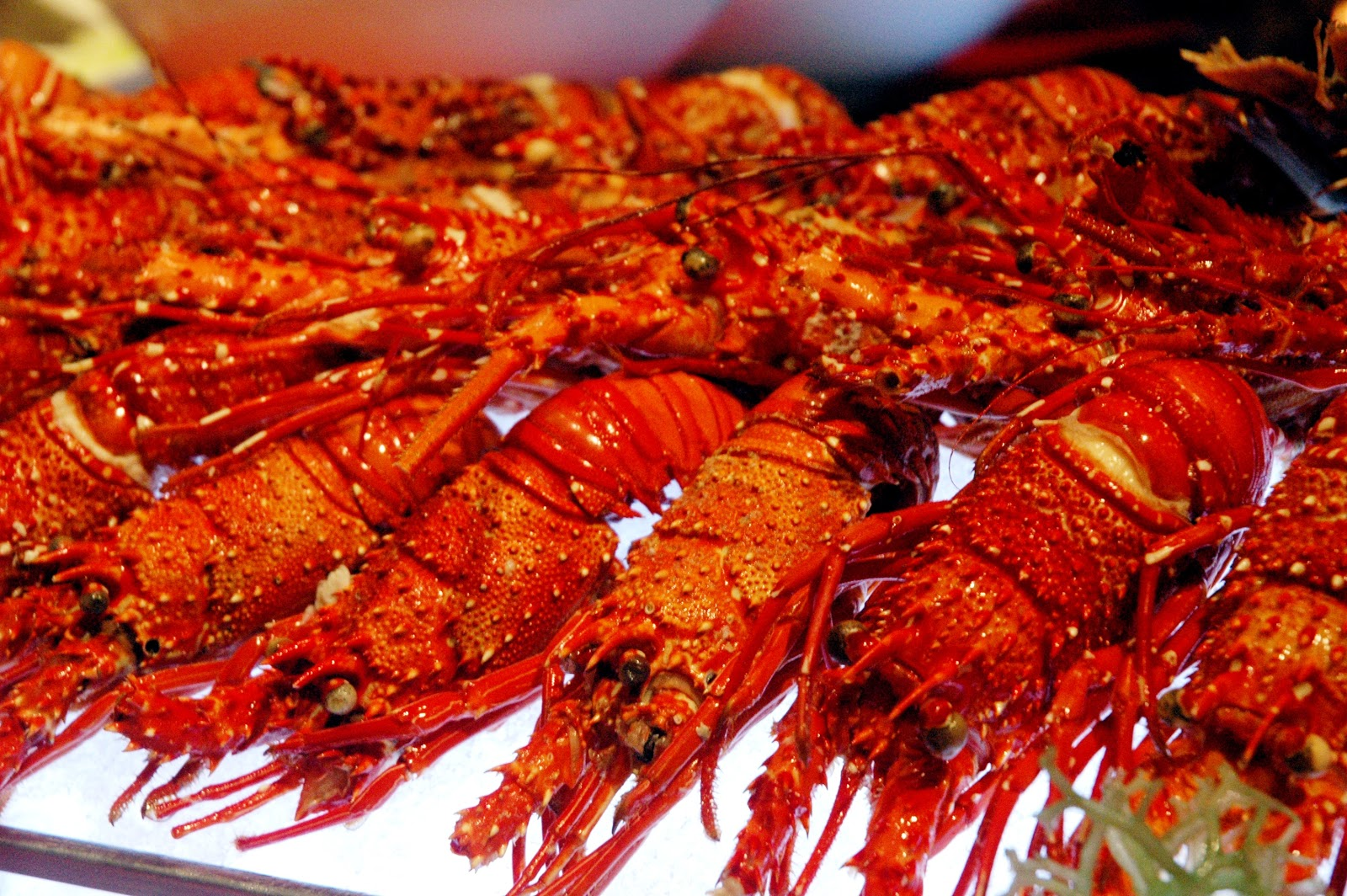 dude for food awesome lobster buffet at diamond hotel s corniche rh dude4food blogspot com lobster buffet near me casino seafood buffet near me all you can eat