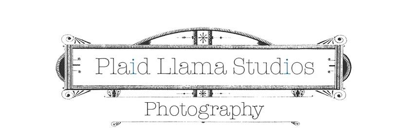 Plaid Llama Studios