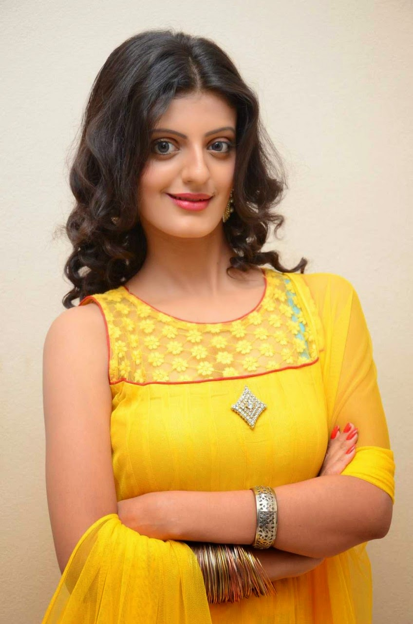 Tanishq Tiwari At Evariki Evaru Telugu Movie Audio Launch Stills