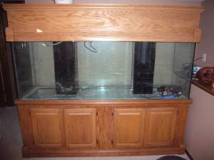 Giant Aquariums: 300 gallon aquarium - $1500 (ramsey) 10 Gallon Fish Tank Stand Metal