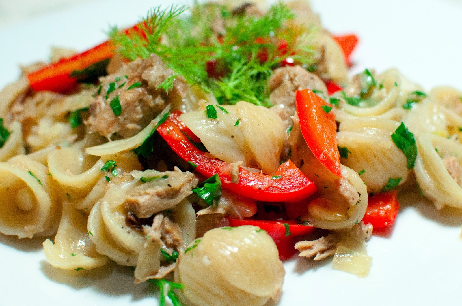 not quite gourmet: Orecchiette with Fennel and Tuna