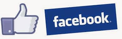 https://www.facebook.com/pages/Coin-Fille-de-Delphine/261254690716701?ref=tn_tnmn