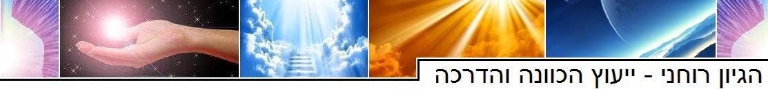 הגיון רוחני - ייעוץ הכוונה והדרכה