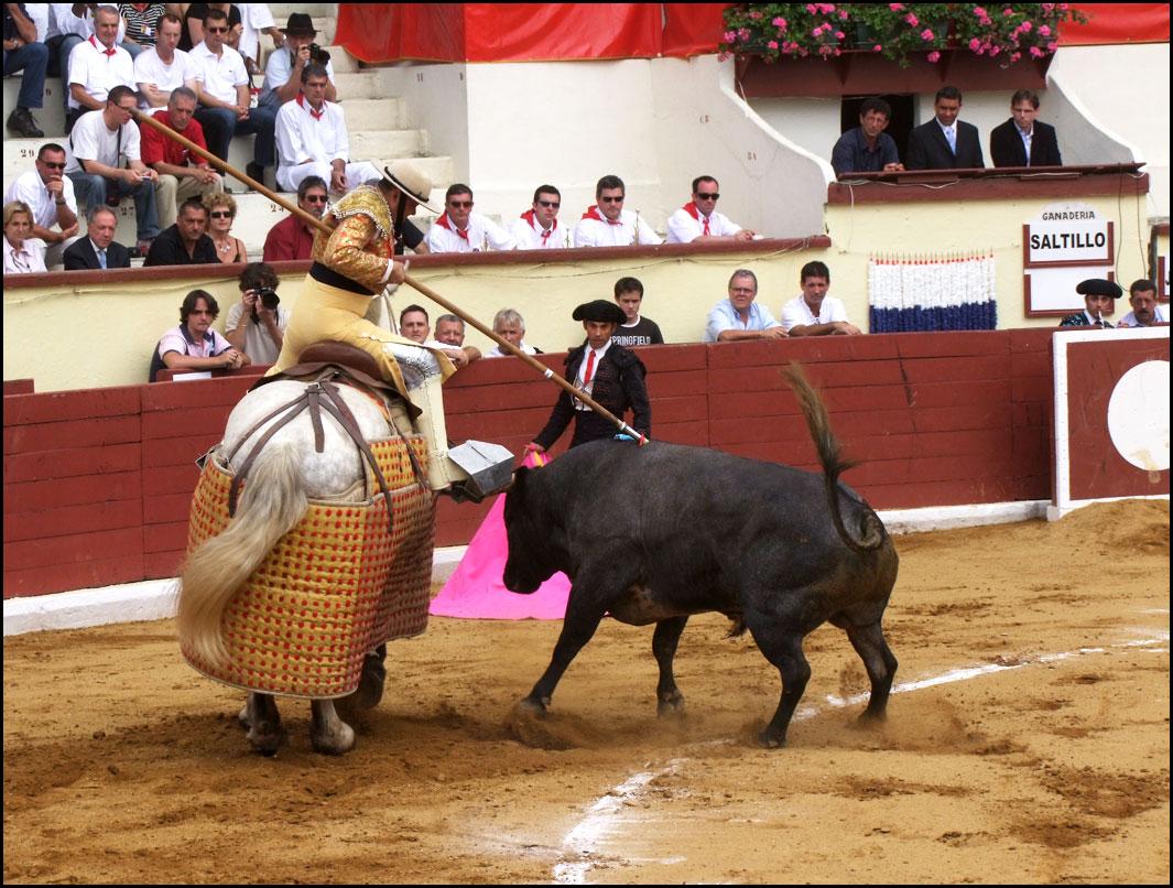 Ortès 2010, novillada de Saltillo
