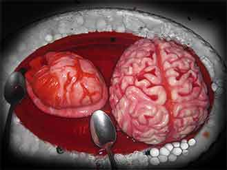 how to make realistic jello brain
