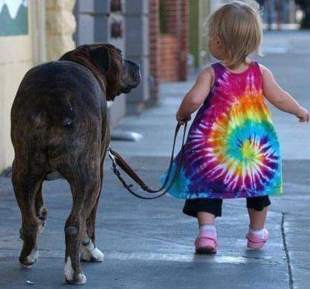 dog and toddler going for a walk