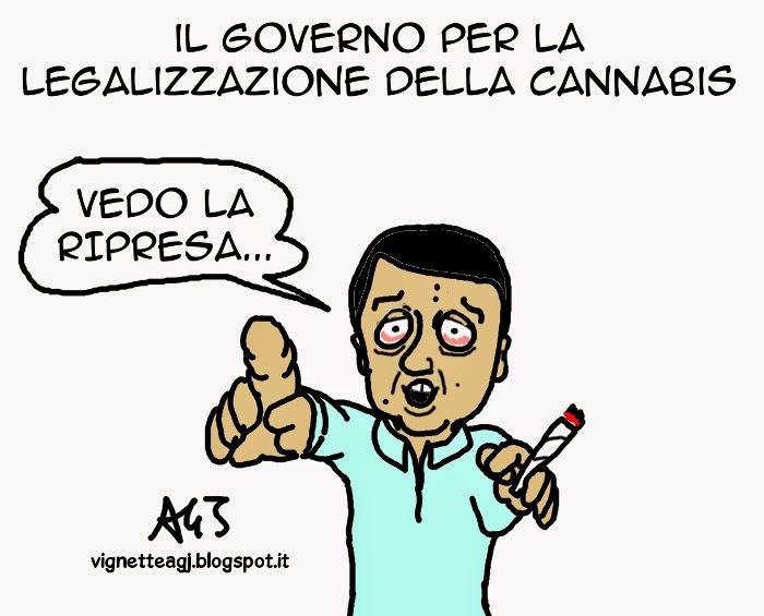 Renzi, governo, cannabis, ripresa, economia, satira , vignetta