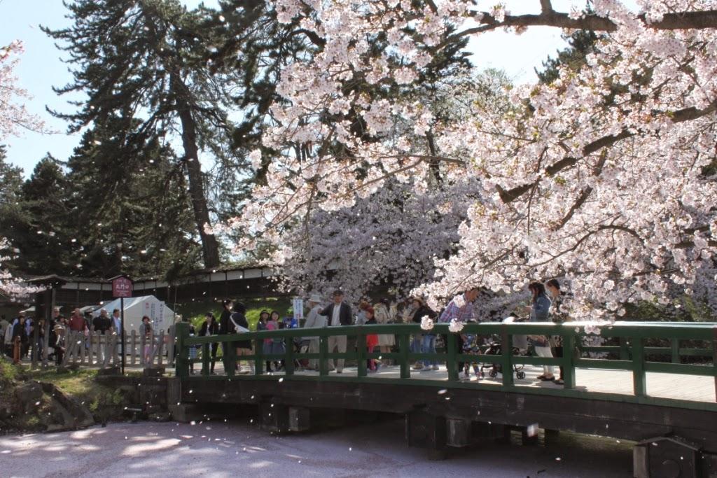 Hirosaki Castle Park Ichoubashi (Bridge)  弘前公園 一陽橋