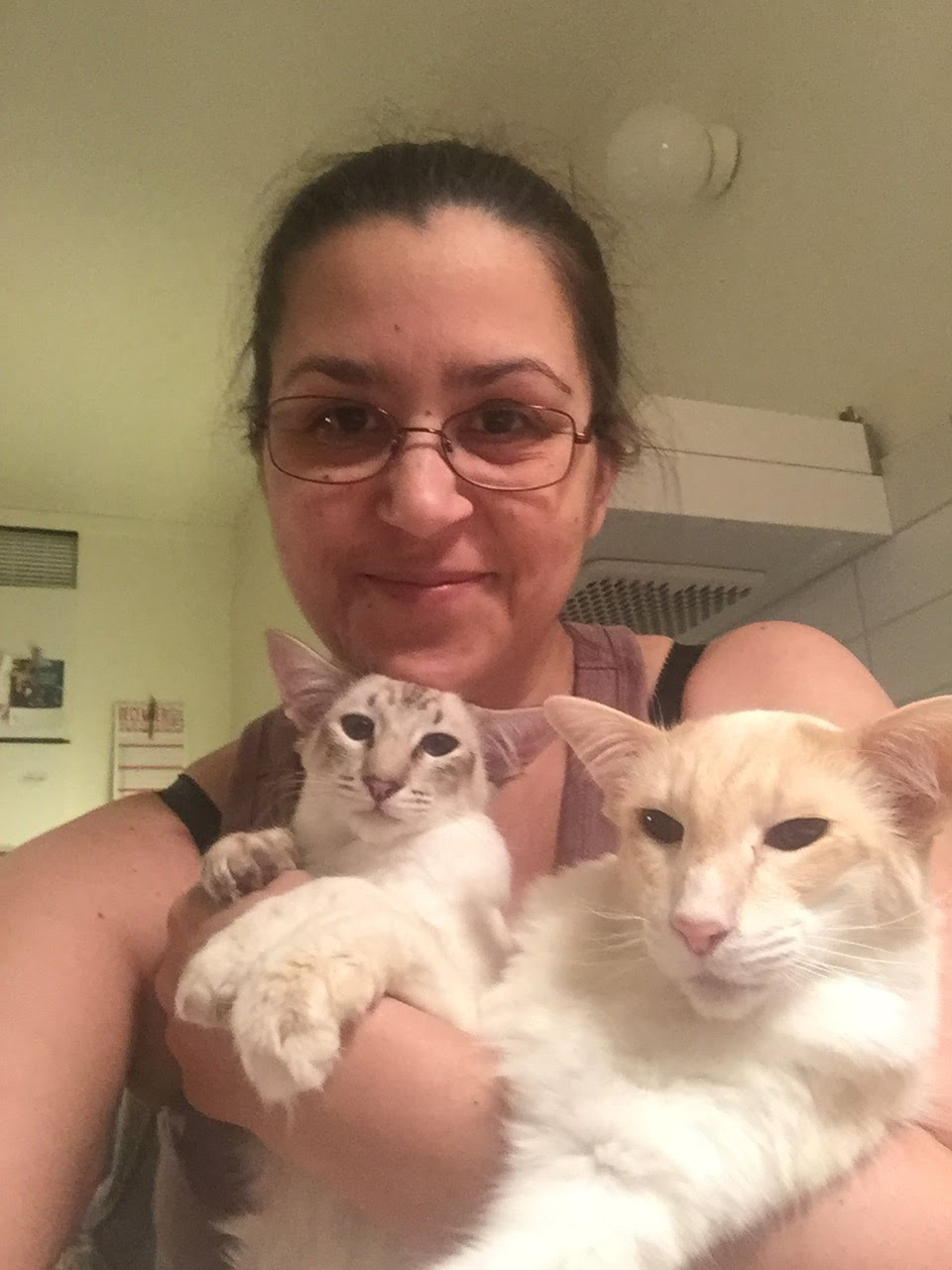 Katterna och jag i januari 2018