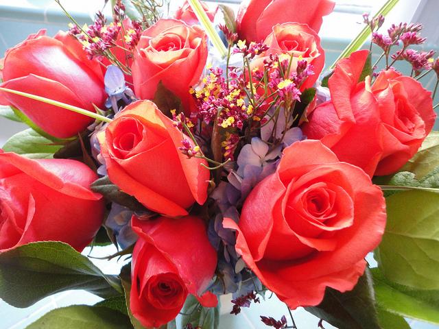 HAPPY BIRTHDAY NADITA !!! Red+Flower