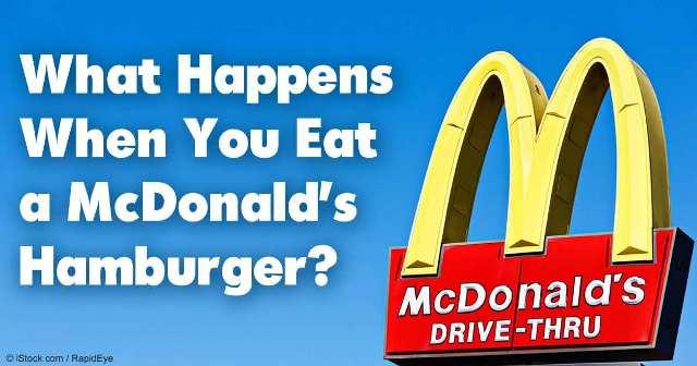 what-happens-mcdonalds-burger-health-risks