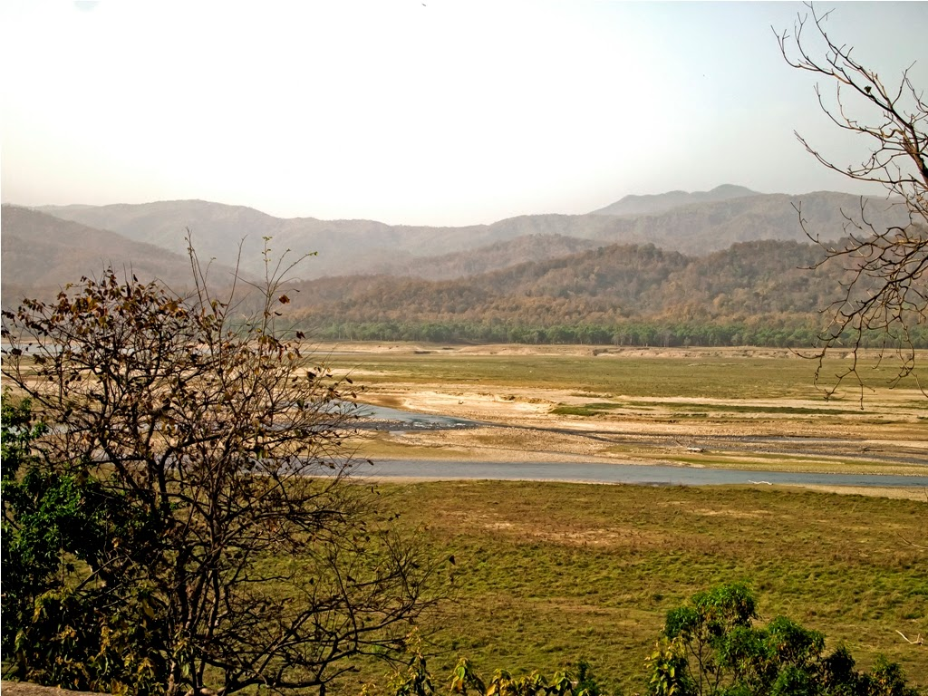 Ramganga river bank from Dhikala forest rest house