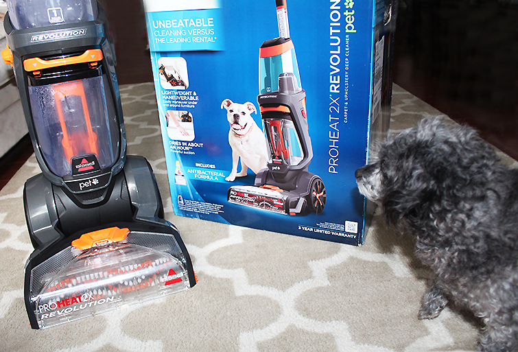 BISSELL ProHeat 2X Pet Revolution Review