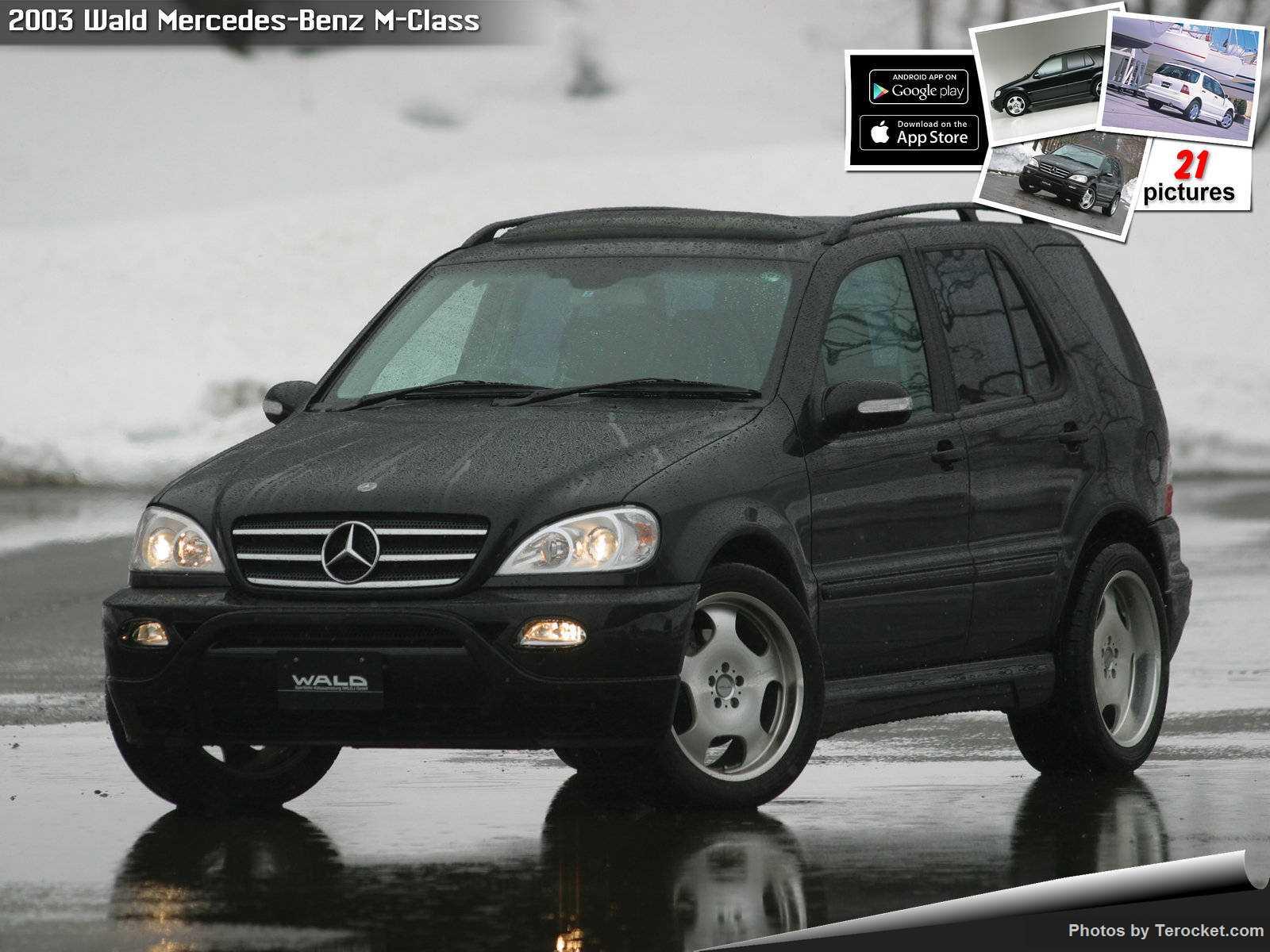 Hình ảnh xe độ Wald Mercedes-Benz M-Class 2003 & nội ngoại thất