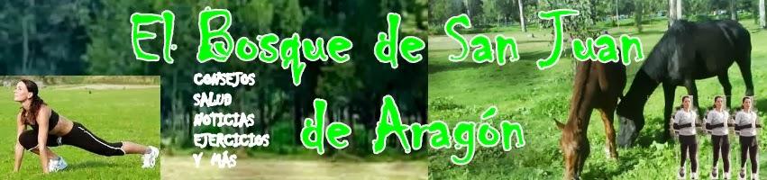 El Bosque de San Juan de Aragon