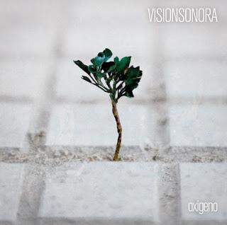 Vision Sonora Oxígeno