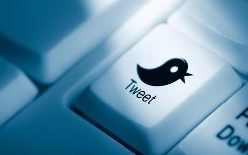 social media Twitter button
