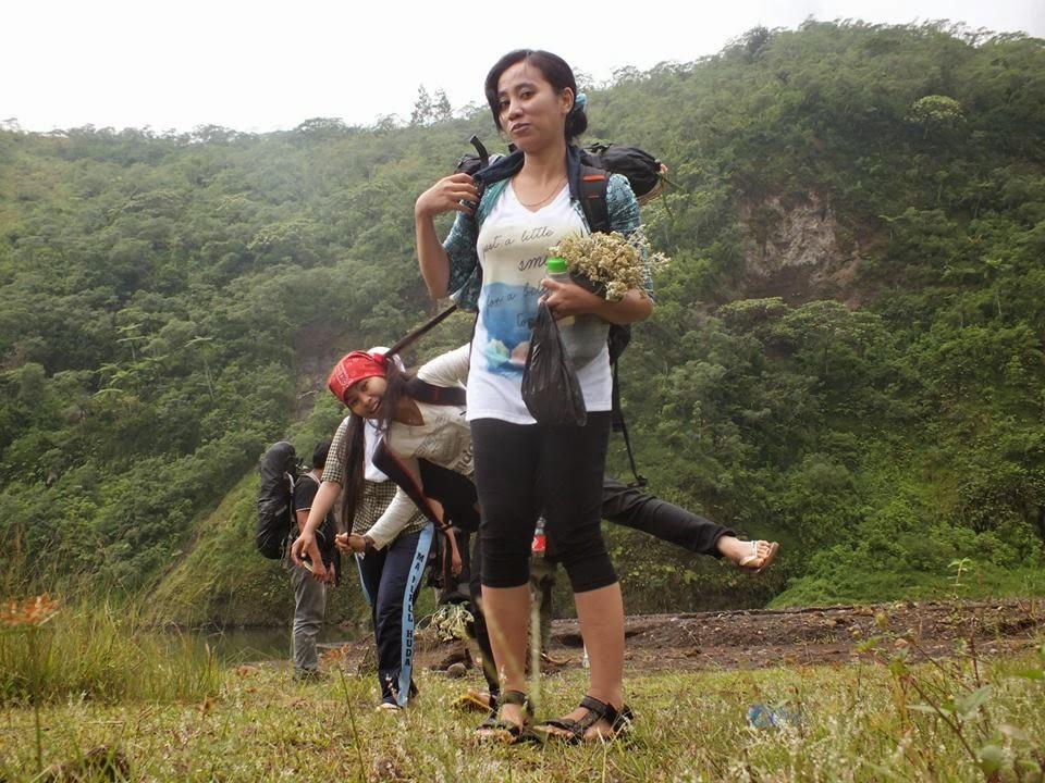 Bunga Edelwis Gunung Galunggung