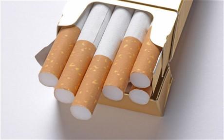 marlboro cigarettes shop
