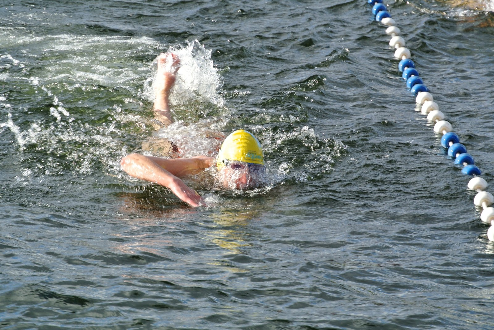 Diary Of An Open Water Swimmer Wild About Swimming And Great North Swimmers The Big Chill