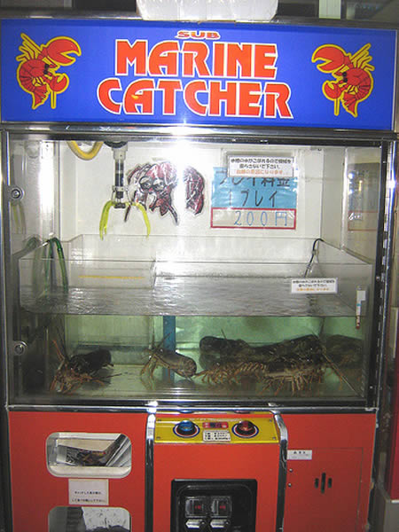 Lobster Catcher Machine