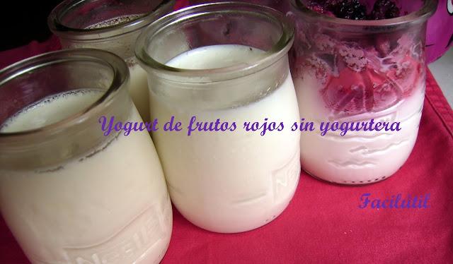 yogurt-sin-yogurtera-con-frutos-rojos