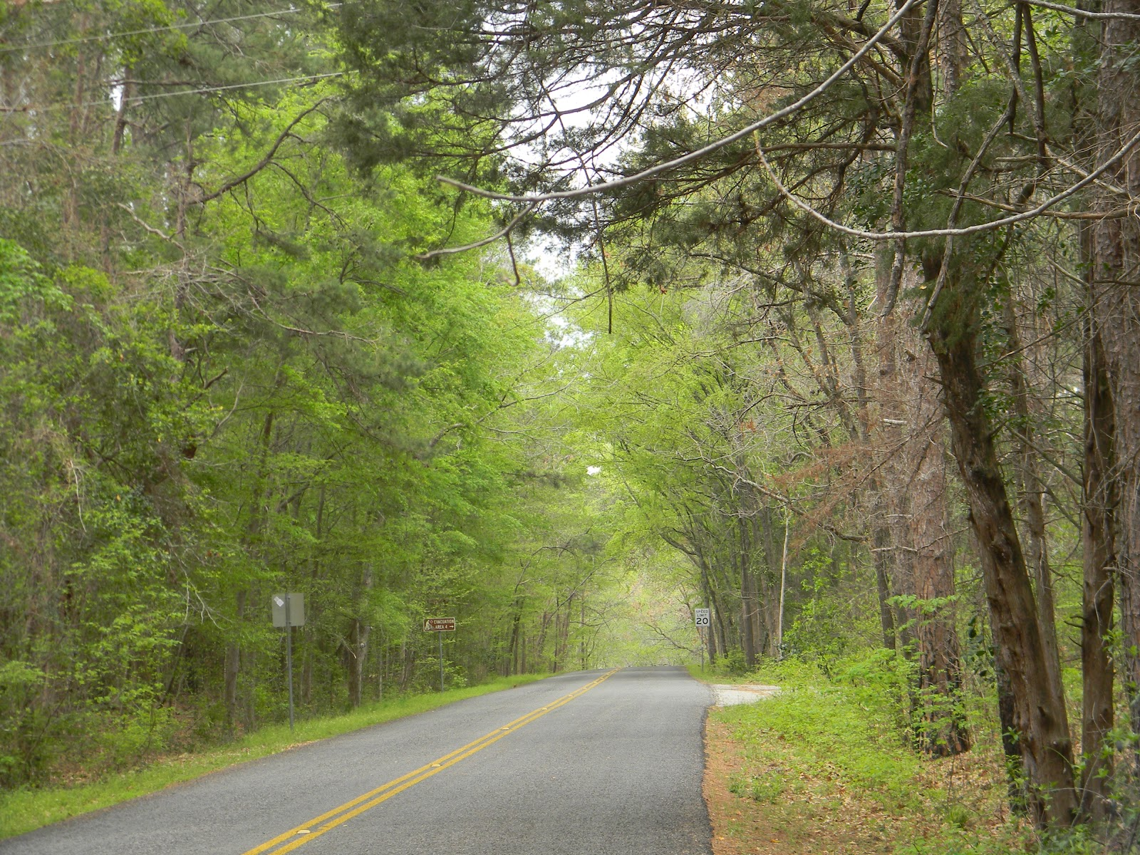 Rvfulltiminglove Tyler State Park