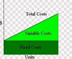 Biaya Total (Total Cost) adalah