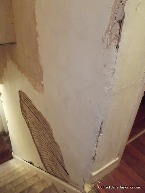 Small project conservation by Lime Earth Paints