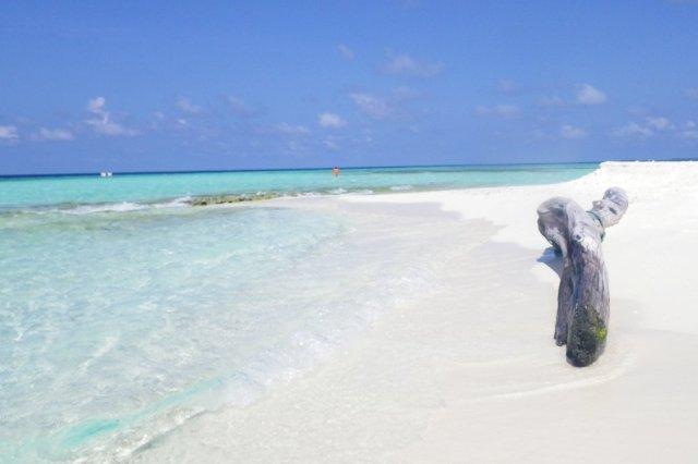 Banco de arena - Playa en las Maldivas