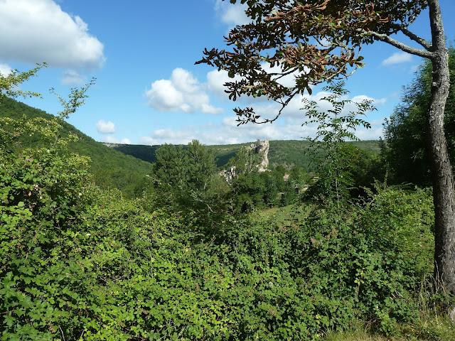 [CR] Bruniquel (82), Gorges de l'Aveyron le 09 juillet 2015. P1070550
